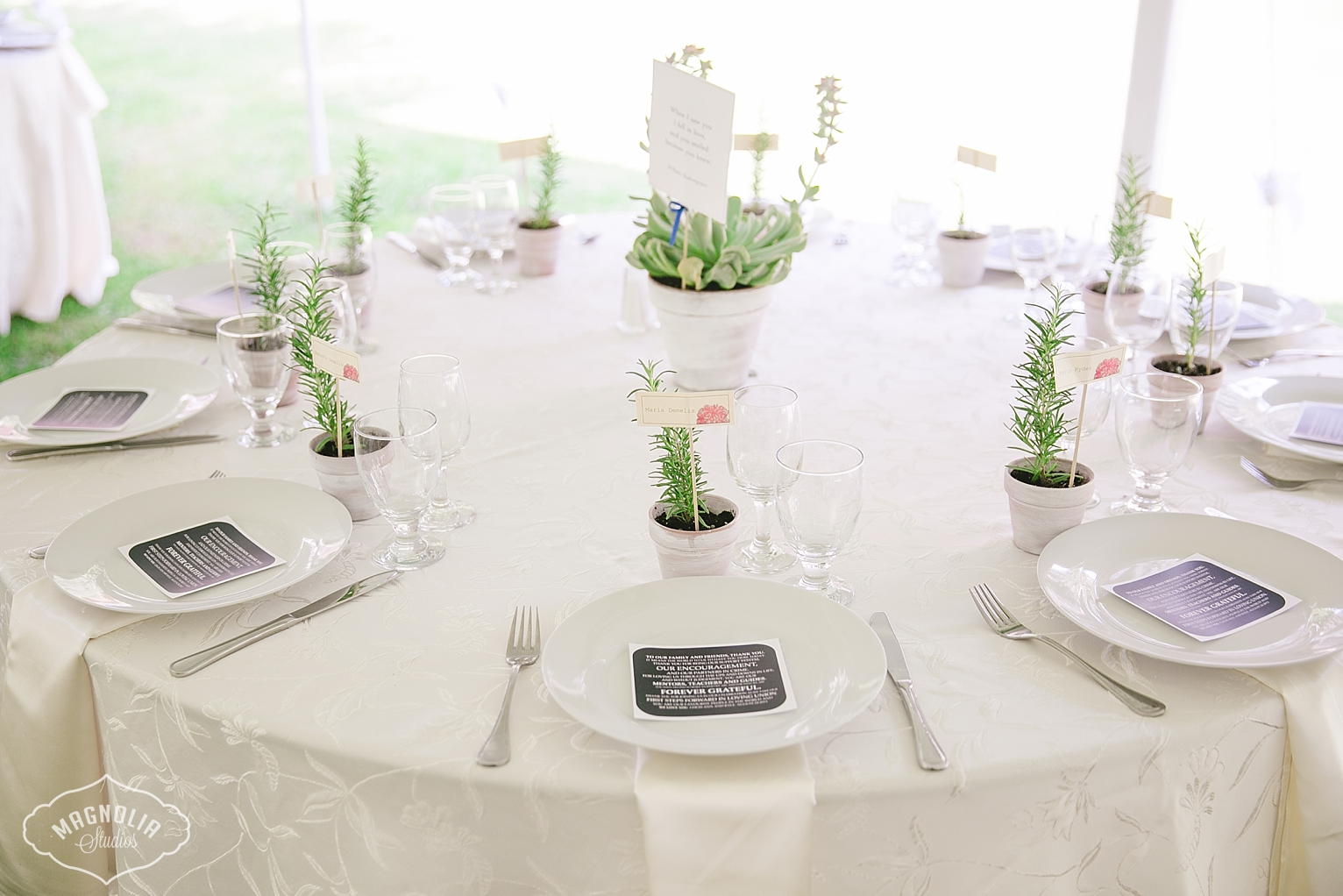 succulent centre pieces indie wedding