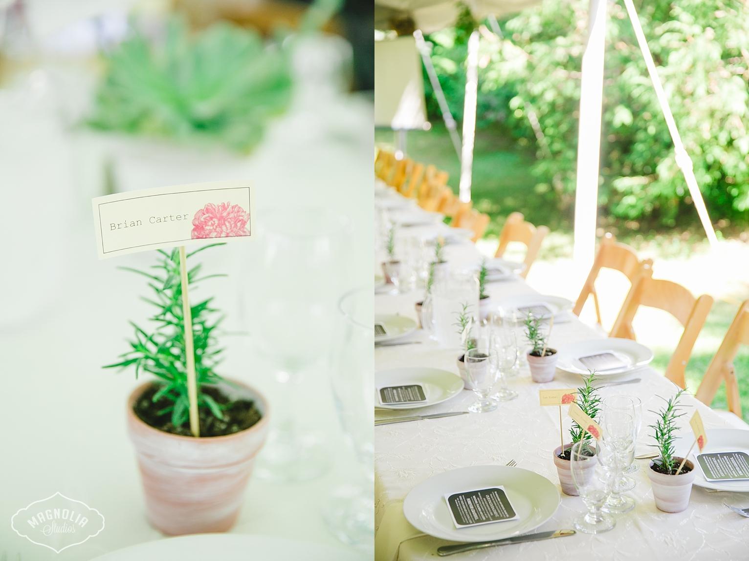 Succulent wedding details Toronto