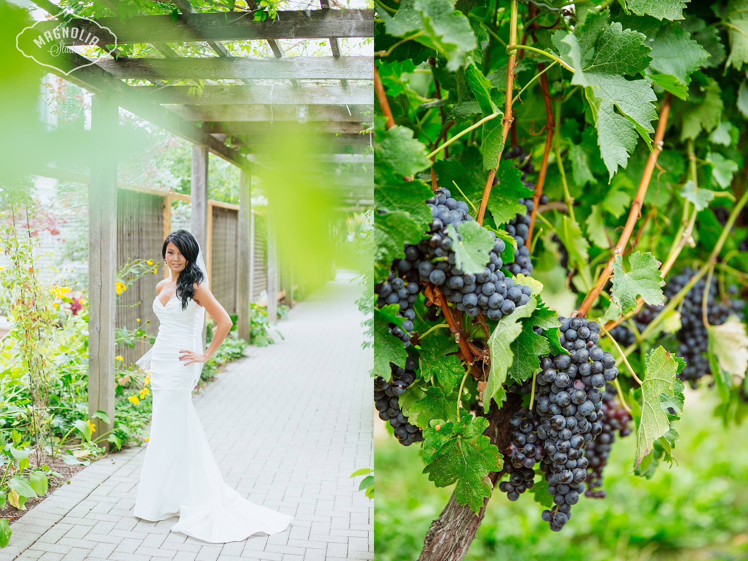 Cavesprings_Winery_Wedding_NOTL-0019