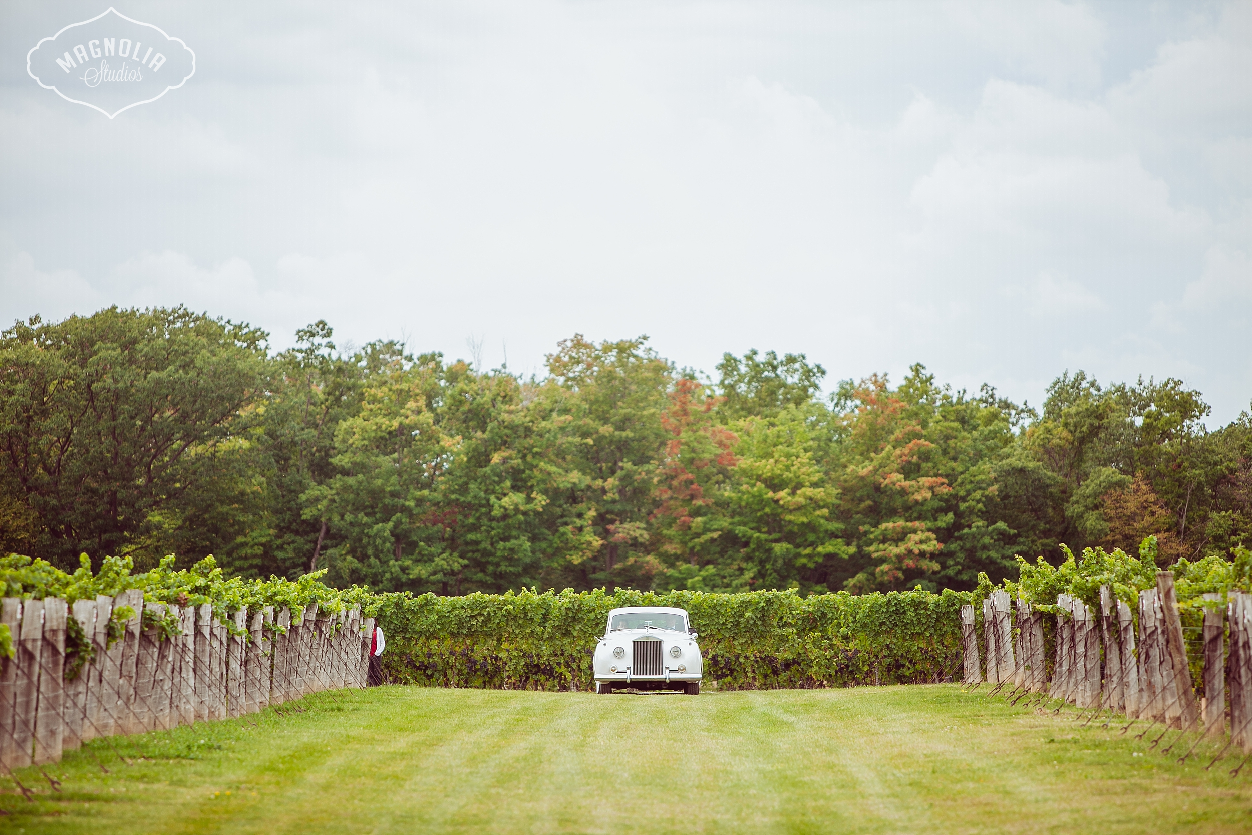 Cavesprings_Winery_Wedding_NOTL-0023