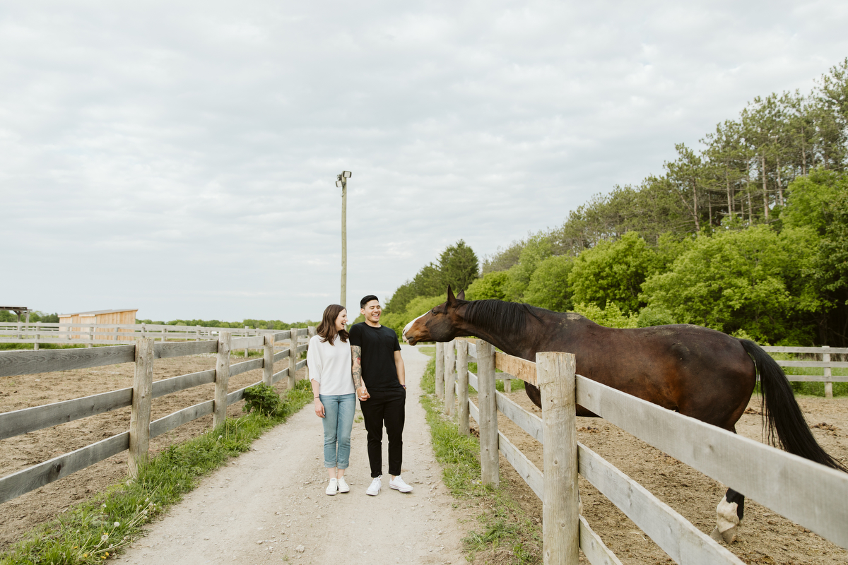 engagement photoshot with horses in king ontario