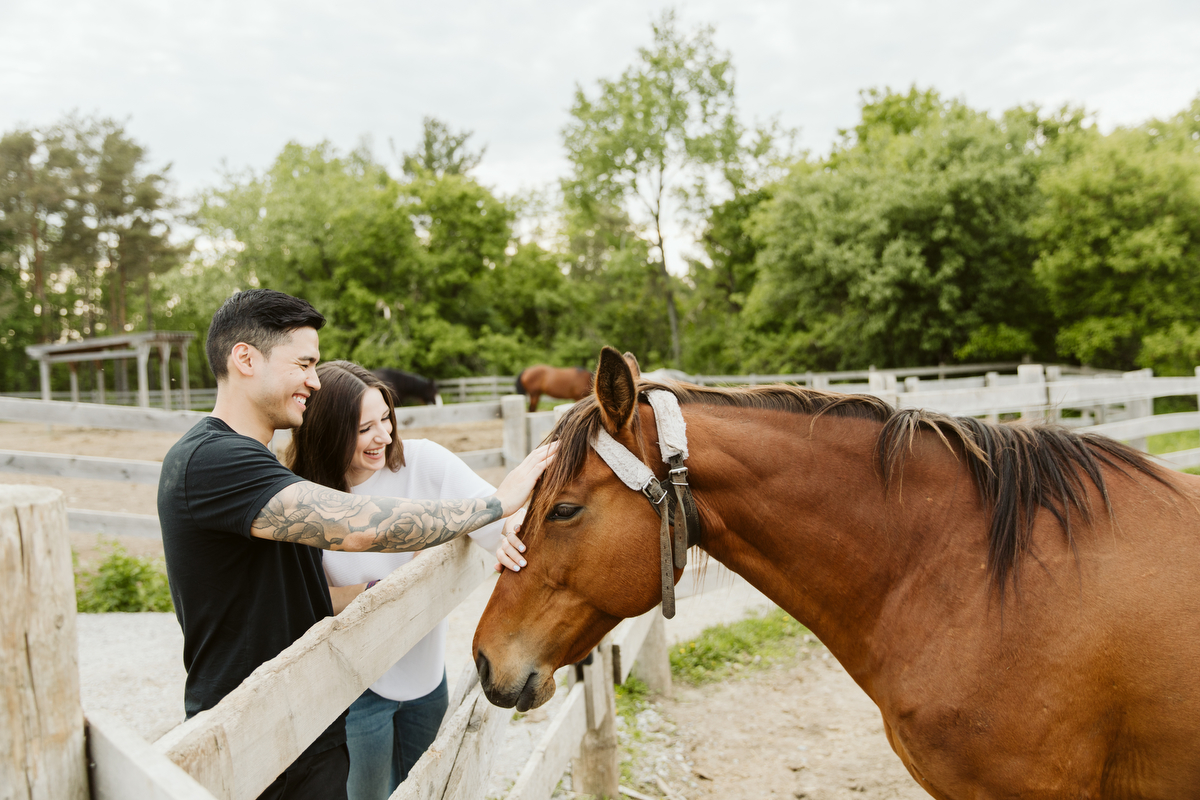 couple with a horse