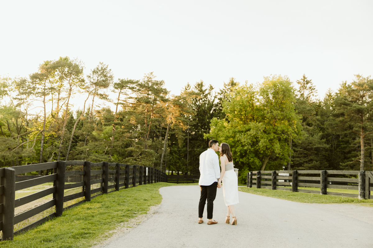 dog tales rescue engagement photography ontario