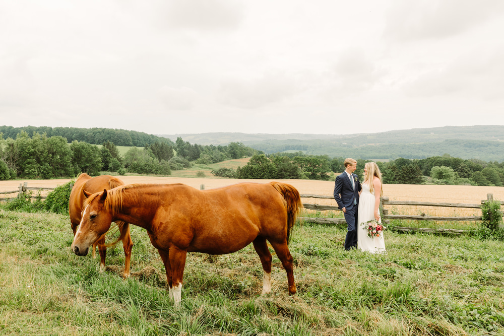 collingwood wedding photography with horses